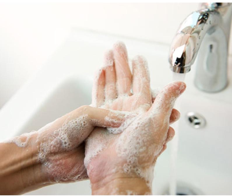 dung dịch rửa tay khử khuẩn vô trùng gentle hands
